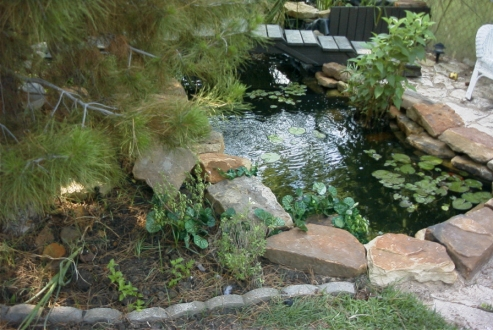 Pond ideas and examples by everything fishy for Do it yourself fish pond